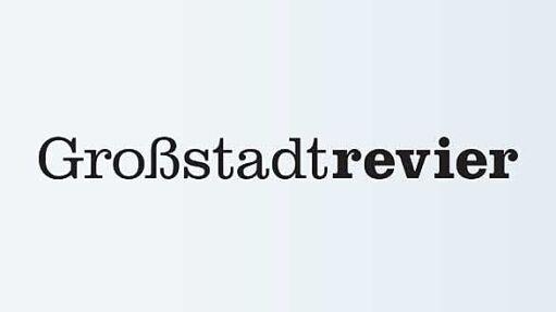 Großstadtrevier (441)