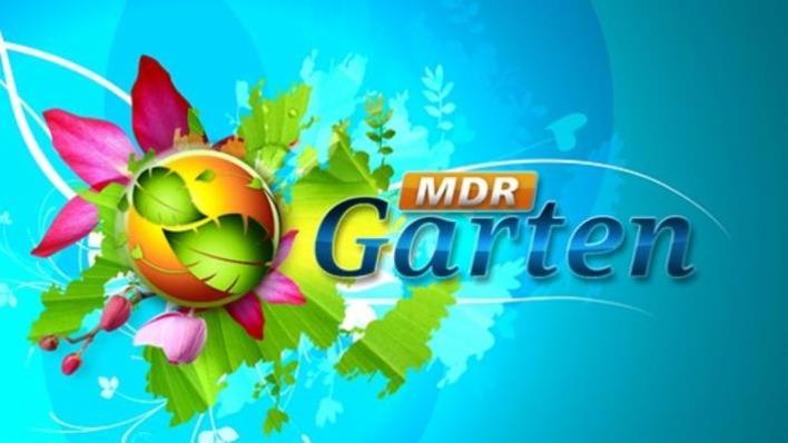 Mdr Garten Sendungen Von A Bis Z Programm Ard De